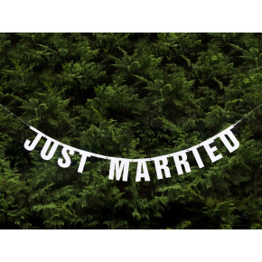 Just Married banner - natur baggrund